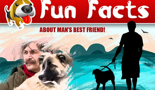 dog-fun-facts2
