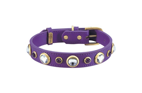 Purple Diamond Collection collar
