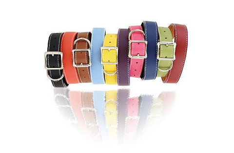 assortment of Tuscany collars