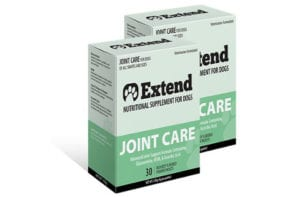 extend-joint-480