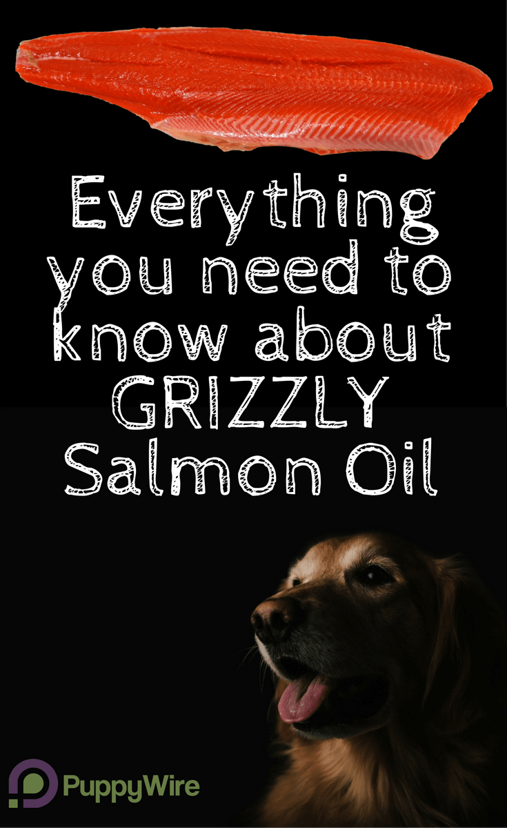 Looking for a quality fish oil for your dog? Grizzly salmon oil for dogs is one of the best in the industry. Our review covers pros and cons, dosage instructions, side effects, and ingredients. Everything you need to know to make an informed buying decision.