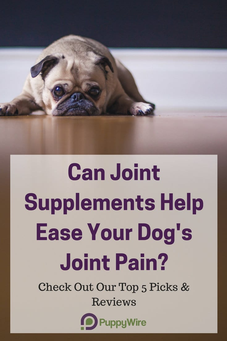 We cover the top 5 picks and reviews for the best glucosamine for dogs as well as dosage, tips and tricks, side effects, what to watch out for with arthritis and hip dysplasia.