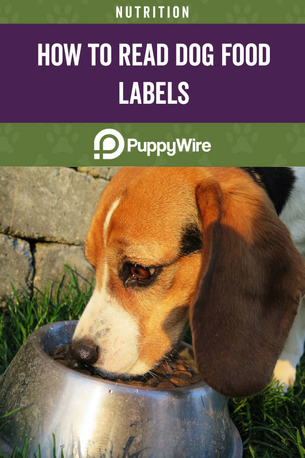 How to Read Dog Food Labels