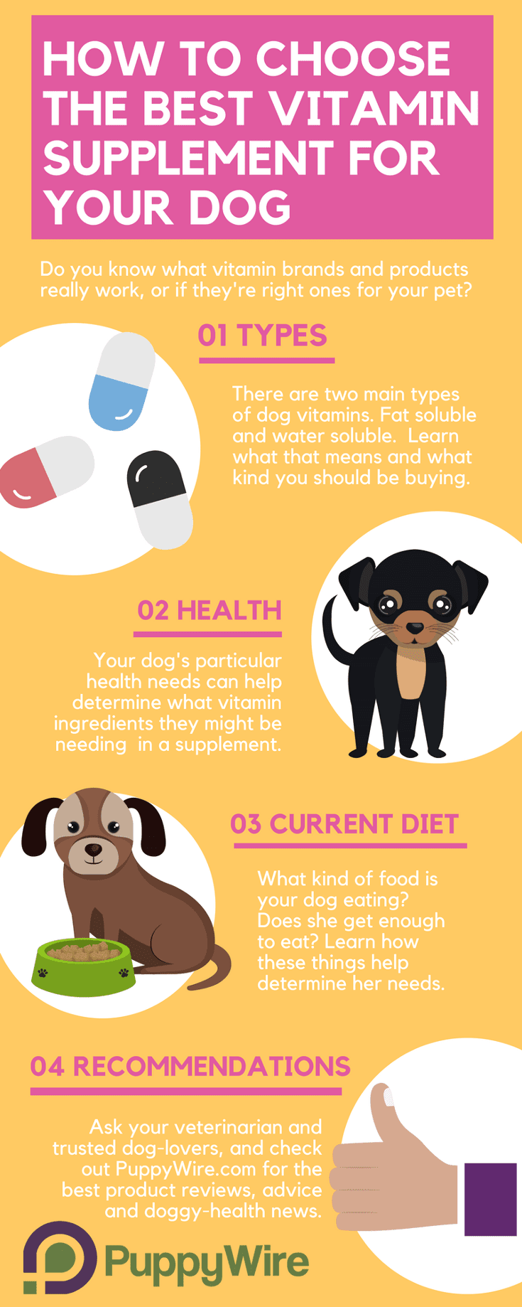 Choosing the best multivitamin for dogs can be challenging. We cover the most important aspects to help regardless if you are looking for vitamins for puppies, vitamins for itchy dry skin or coats, or just vitamins to supplement your dogs diet.