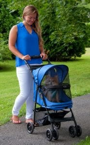 Happy Dog in Stroller