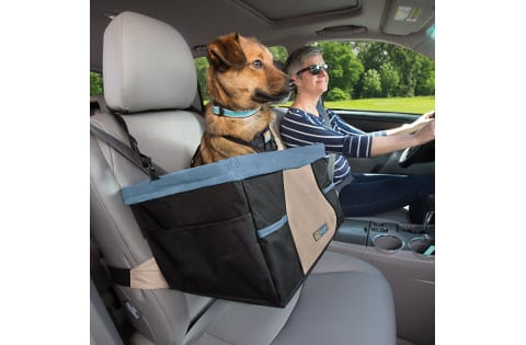 Best Dog Car Seats Top 5 Safe Effective Picks Reviews