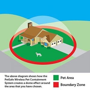 Wireless Dog Fence Boundaries
