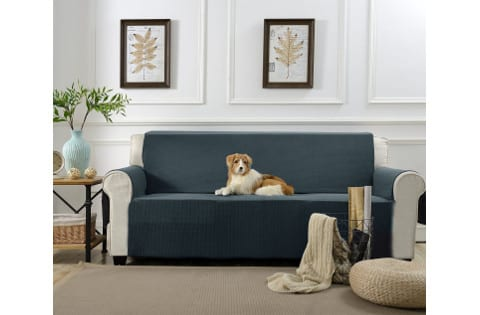 Awe Inspiring Pet Couch Covers That Stay In Place 5 Best Picks Reviews Beatyapartments Chair Design Images Beatyapartmentscom