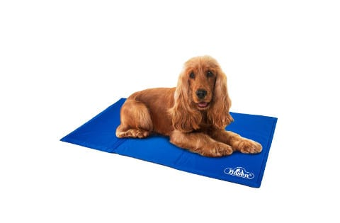 Basen Pet Cooling Mat