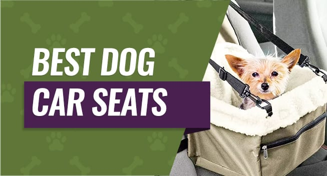 Best Dog Car Seats