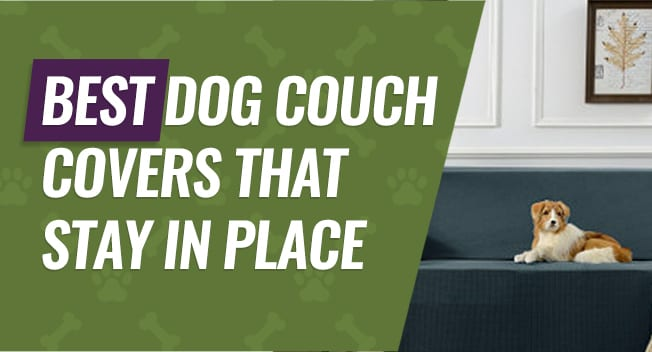 Wondrous Pet Couch Covers That Stay In Place 5 Best Picks Reviews Uwap Interior Chair Design Uwaporg