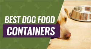 Top 5 Dog Food Containers