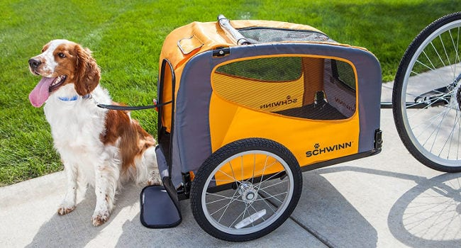 Happy Dog in Schwinn Pet Bike Trailer