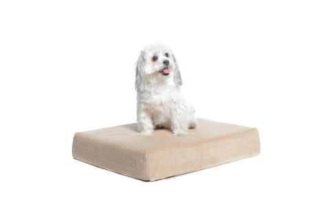 Milliard Premium Orthopedic Memory Foam Waterproof Dog Bed