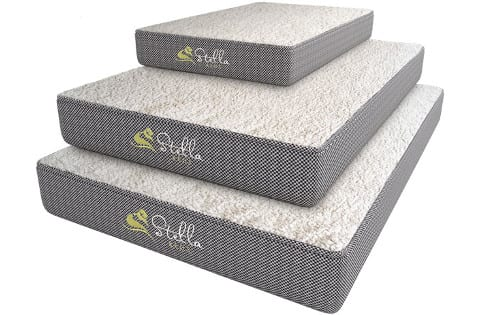 Stella Beds Elevated Dog Bed with Waterproof Liner
