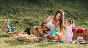 German Shepherd with happy kid and family