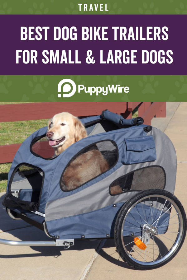 Best Dog Bike Trailers for Small and Large Dogs