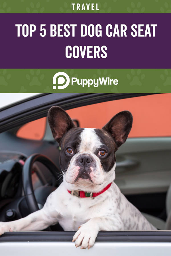 Top 5 Best Dog Car Seat Covers