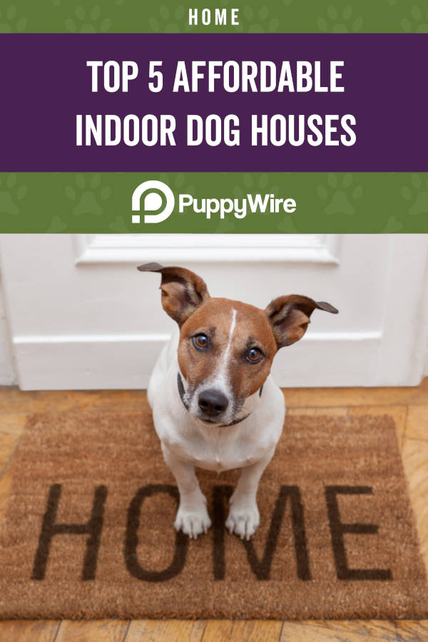 Top 5 Affordable Indoor Dog Houses