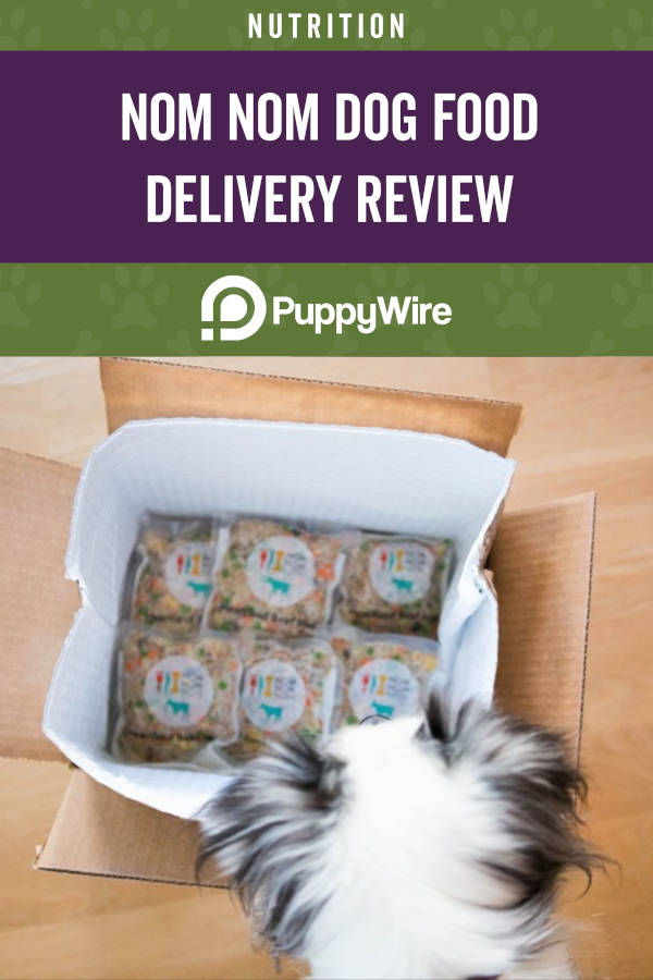 Nom Nom Dog Food Delivery Service Review