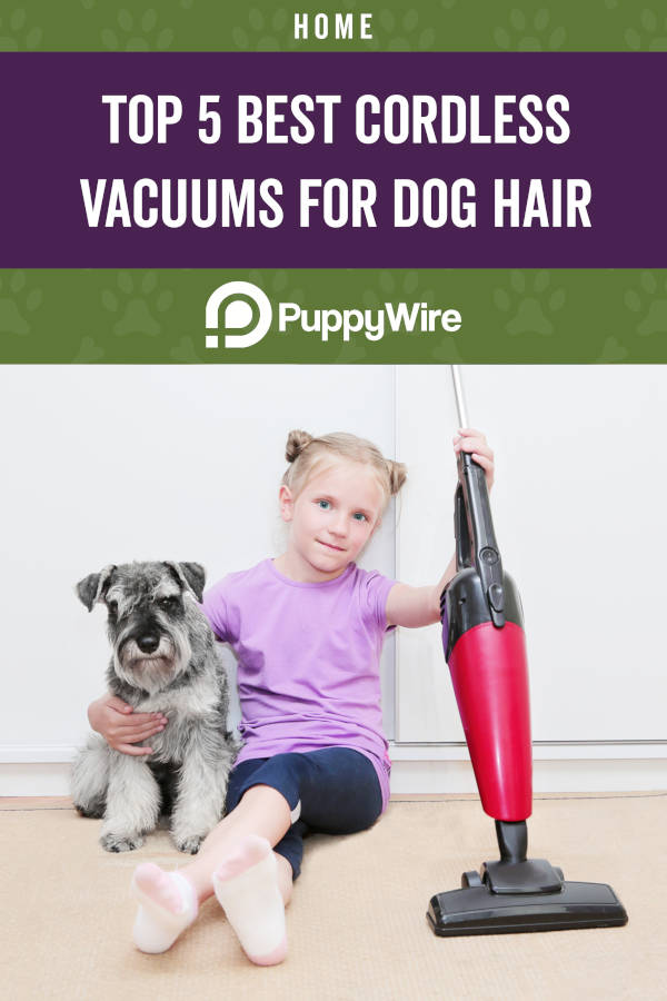 Top 5 Best Cordless Vacuums for Dog Hair