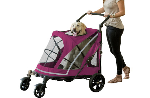 Pet Gear Expedition Stroller for Large Dogs
